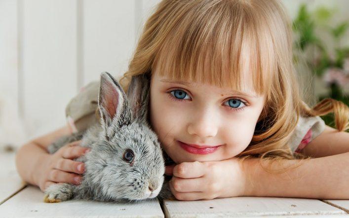 Les influences des jouets sur le comportement des enfants
